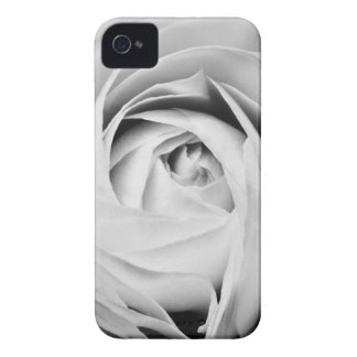 Ranunculus iPhone 4/4S Case-Mate Barely There Case
