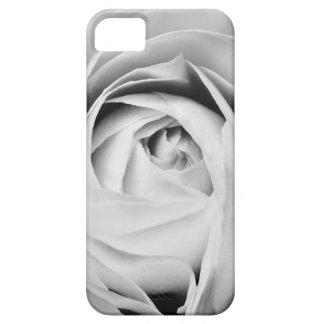 Ranunculus iPhone 5 Case-Mate-kaum dort Fall iPhone 5 Cover