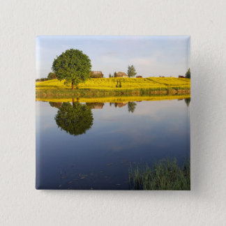 Rapeseed field 15 cm square badge