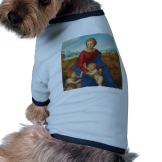 Raphael: Madonna in the Meadow Dog Tee Shirt