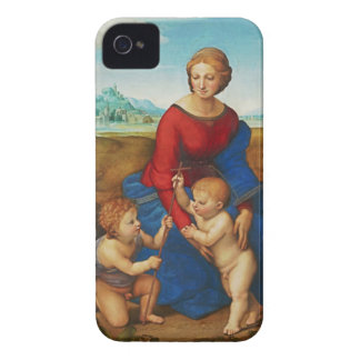 Raphael: Madonna in the Meadow iPhone 4 Cases