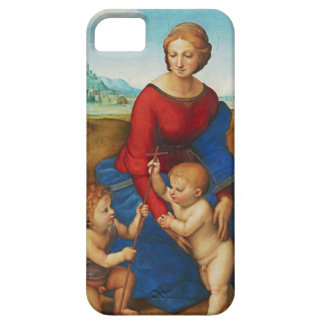 Raphael: Madonna in the Meadow iPhone 5 Case