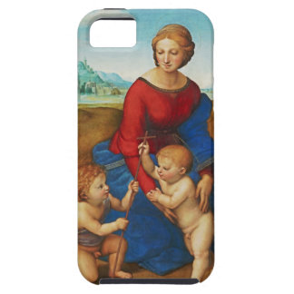 Raphael: Madonna in the Meadow iPhone 5 Cover