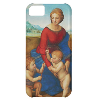 Raphael: Madonna in the Meadow iPhone 5C Case