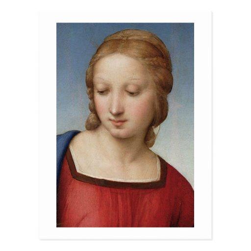 Raphael Madonna of the Goldfinch Postcard