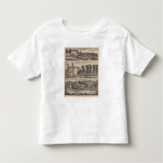 Rapidan Mills and Residences in Rapidan, Minnesota Toddler T-Shirt