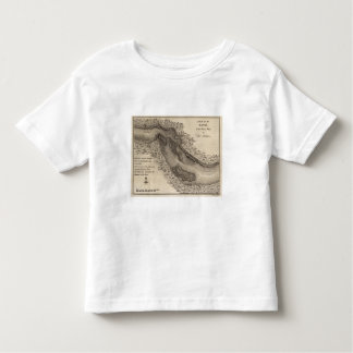 Rapids, in the River Ohio Toddler T-Shirt