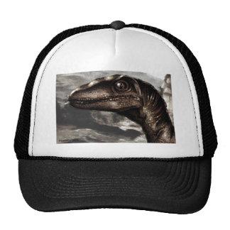 raptor94 cap