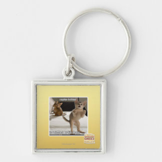 Raptor Kitten Silver-Colored Square Key Ring
