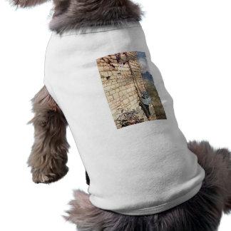 Rapunzel Sleeveless Dog Shirt