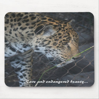 Rare and endangered beauty mouse pad