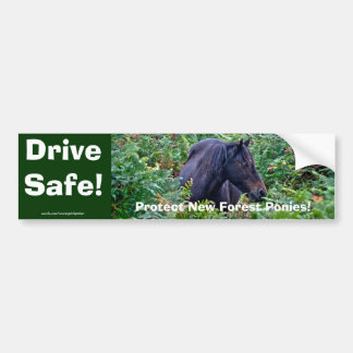 Rare Black New Forest Pony - Wild Horse - England Bumper Sticker