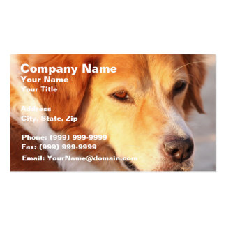 Rare Orange Dog Double-Sided Standard Business Cards (Pack Of 100)