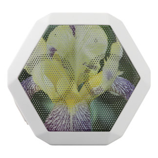 Rare Orchid White Boombot Rex Bluetooth Speaker