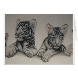 Rare Pair  White Tiger Cubs Greeting Card