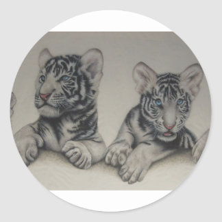 Rare Pair  White Tiger Cubs Stickers