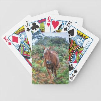 Rare Palomino New Forest Pony & Bracken - England Deck Of Cards