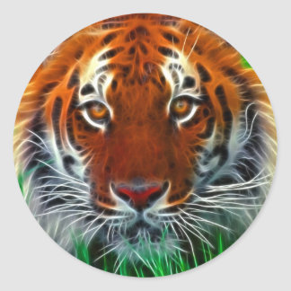 Rare Sumatran Tiger from Indonesia Classic Round Sticker