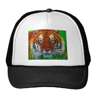 Rare Sumatran Tiger from Indonesia Hat