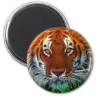 Rare Sumatran Tiger from Indonesia Magnet
