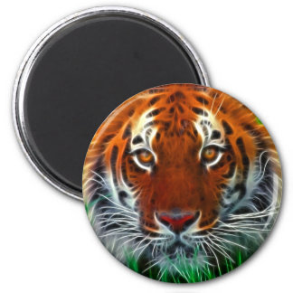 Rare Sumatran Tiger from Indonesia Magnet