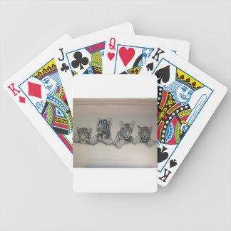 Rare White Tiger Cubs Card Deck