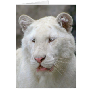 Rare White Tiger Greeting Card