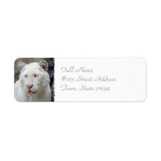 Rare White Tiger Mailing Label Return Address Label