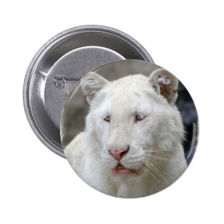 Rare White Tiger Round Button