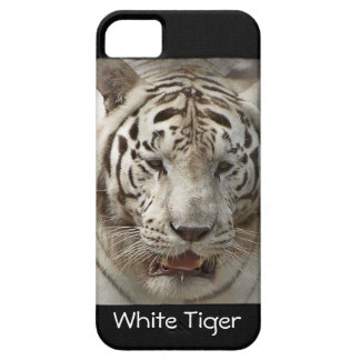Rare White Tiger Wild Animal Big Cat iPhone 5 Covers