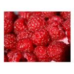 rasberry fruit closeup food design picture post card
