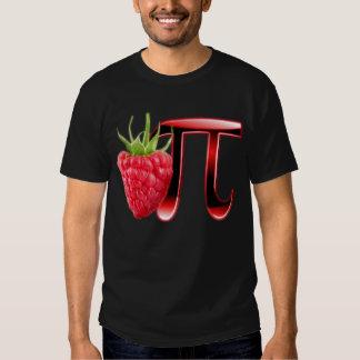 Rasbperry and Pi Symbol Tee Shirts