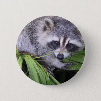 Rascal Racoon 6 Cm Round Badge
