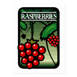 Raspberries Postcard