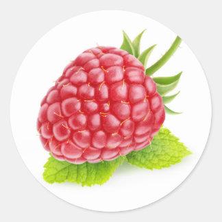 Raspberry and mint classic round sticker