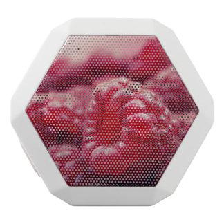 raspberry white boombot rex bluetooth speaker