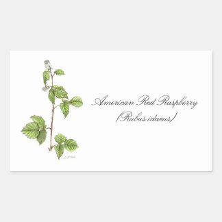 Raspberry Botanical Seal Rectangular Stickers