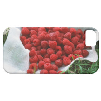 Raspberry Case For The iPhone 5