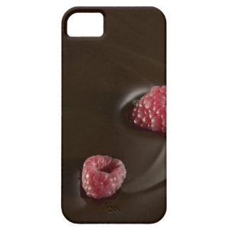 raspberry chocolate iPhone 5 cases