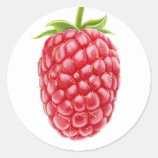 Raspberry Classic Round Sticker
