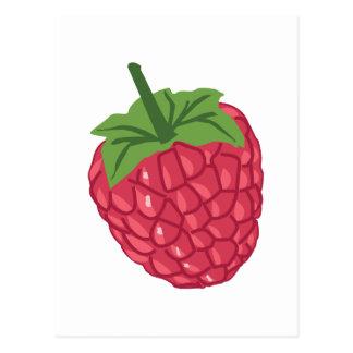Raspberry Fruit Postcard