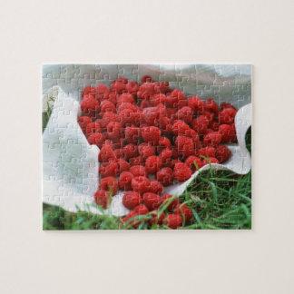 Raspberry Puzzle