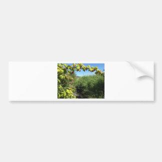 Raspberry River Bumper Sticker