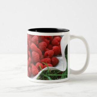 Raspberry Two-Tone Coffee Mug