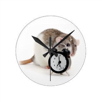 Rat and alarm clock. wall clocks