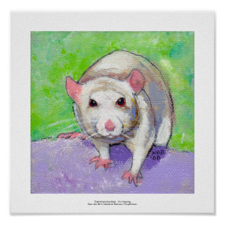 Rat art cute pet fun painting friendly white rats poster