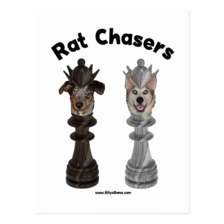 Rat Chasers Chess Dogs Postcard