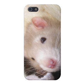 Rat iPhone Case Case For iPhone 5/5S