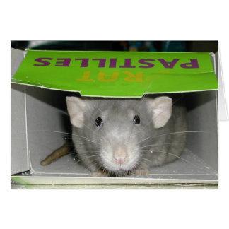 Rat Pastilles Greeting Card