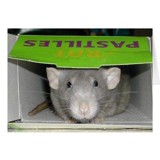 Rat Pastilles Greeting Cards